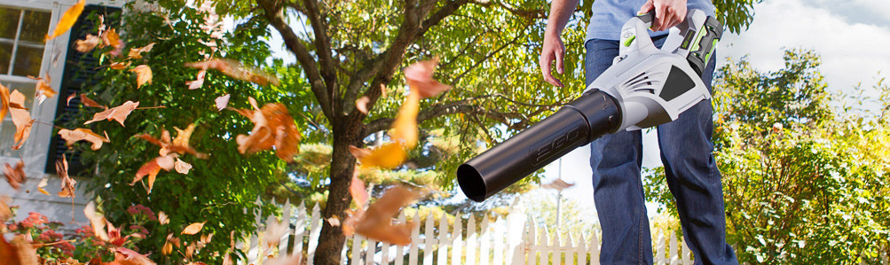 Hand-Held Cordless Leaf Blowers
