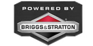 Briggs & Stratton 500E Series