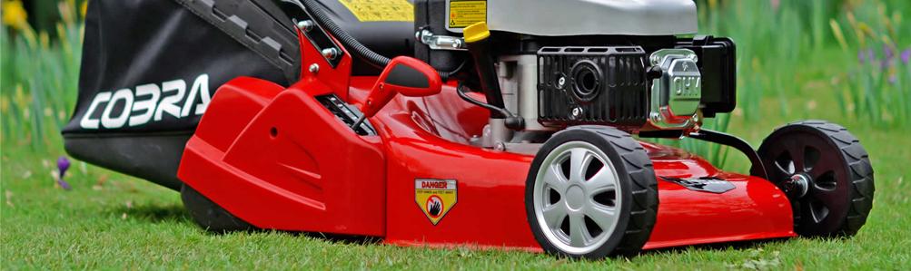 Cobra Petrol Rear Roller Lawn Mowers