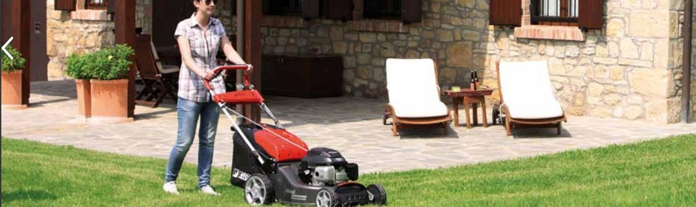 Efco Lawn Mowers