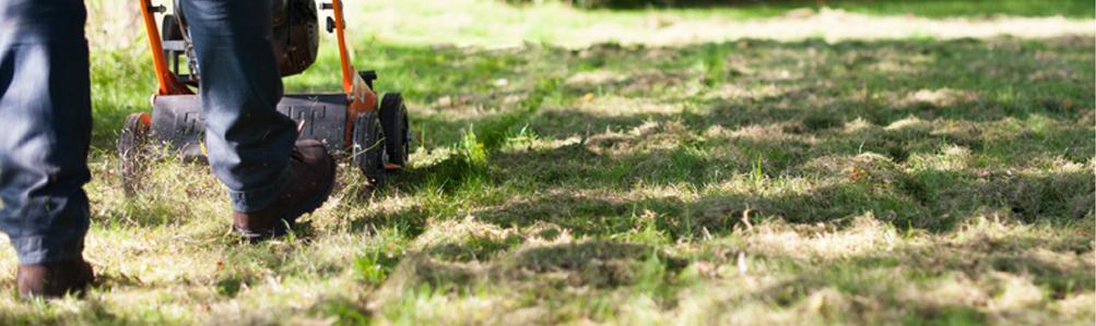 Eliet Lawn Scarifiers