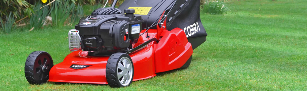 Petrol Rear Roller Rotary Lawn Mowers