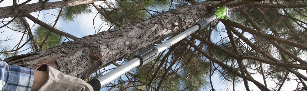 Pole Pruners - Pole Saws