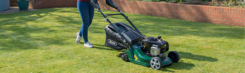 Webb Petrol Rear Roller Rotary Lawn Mowers
