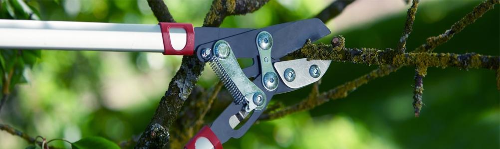 WOLF-Garten Hand Tool Cutting Range with Fixed Handle