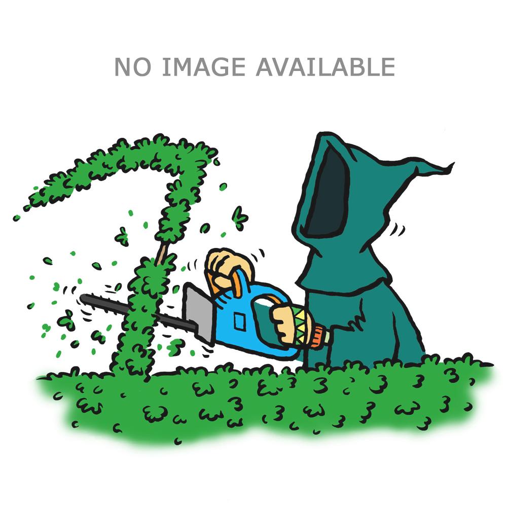 """Gardencare AC31101 40"""" Tine Towed Dethatcher"""