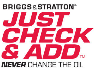 DR powered by Briggs and Stratton
